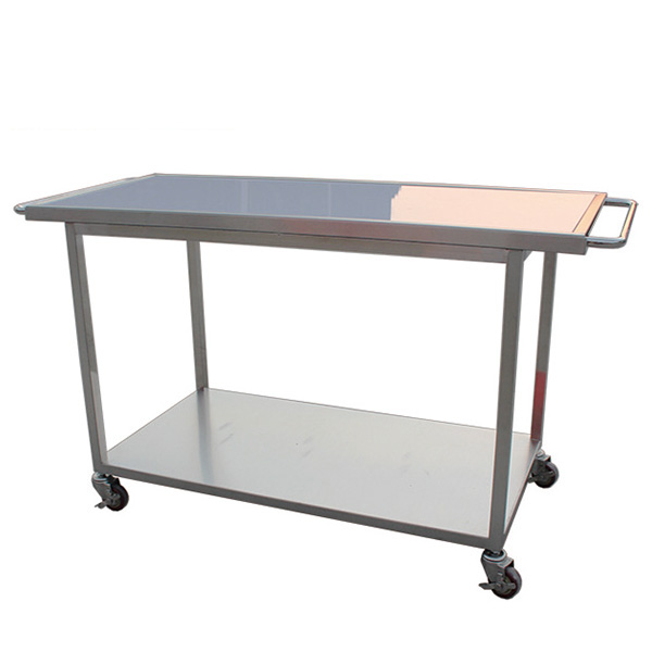 Veterinary Detachable Stretcher Table