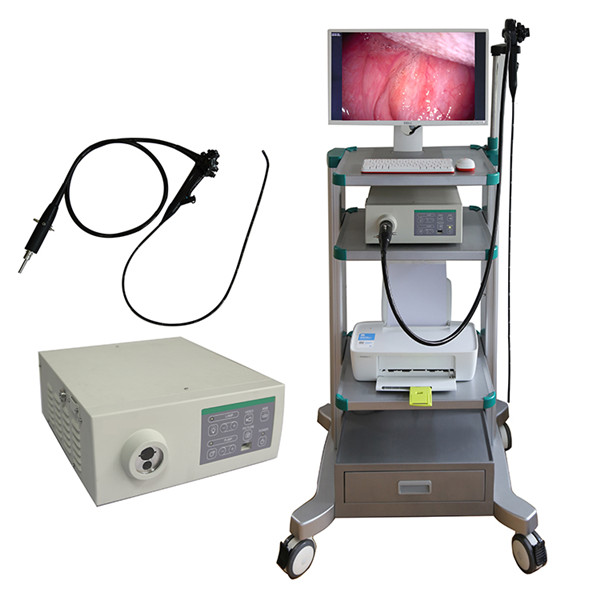 Veterinary Video Endoscope System