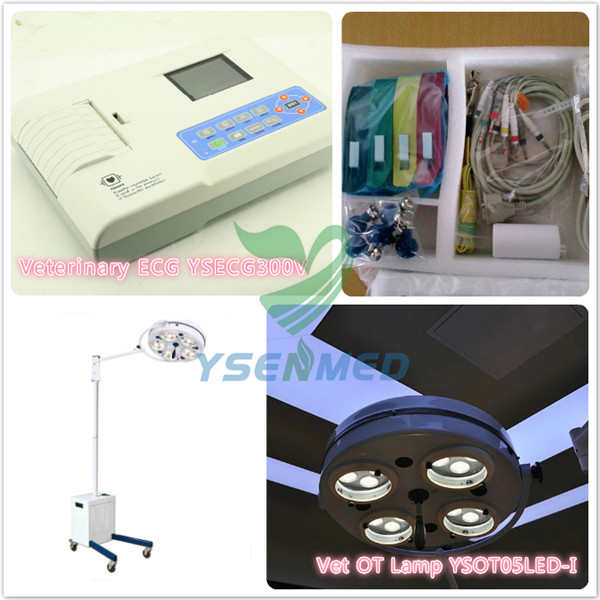 Vet ECG Machine and Surgical Lamp