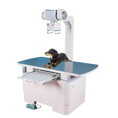 Veterinary X Ray YSX160-B