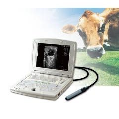 Veterinary Ultrasound Machine YSB5000V