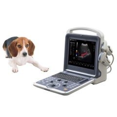 Veterinary Color Doppler Ultrasound System YSB-K2000V