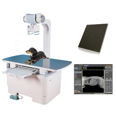 Veterinary Digital X Ray YSX160-C