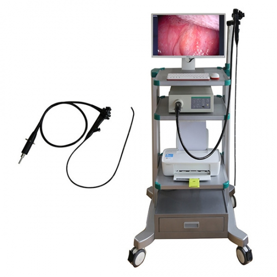 Trolly Veterinary Video Endoscope System YSNJ-100VET-T
